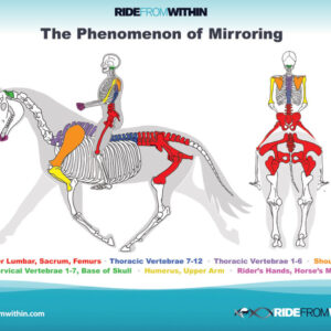 10) Phenomenon of Mirroring