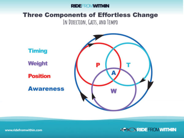 9) Three Components of  Effortless Change