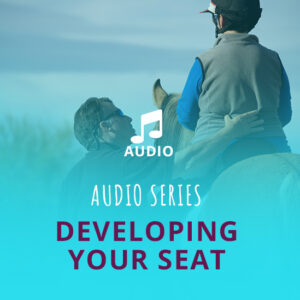 Developing Your Seat Audio