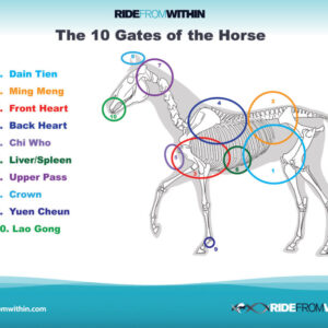 6) The 10 Gates of The Horse